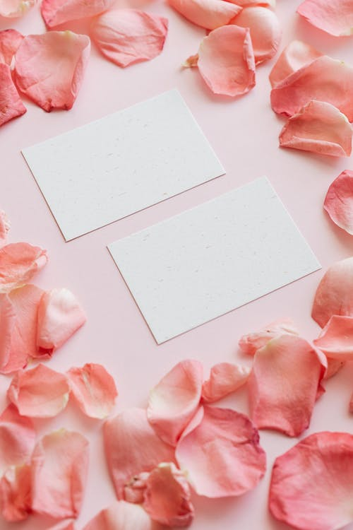 White paper sheets among petals