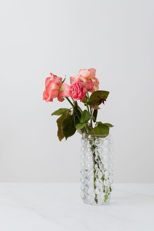 Transparent vase with blooming rose bouquet on white table