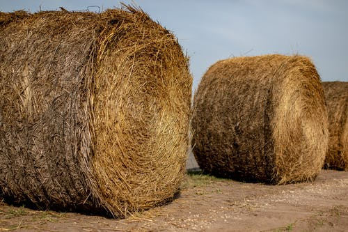 Free stock photo of bales, country, farm, farm field