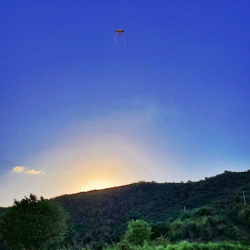 Free stock photo of farm life, kite, montañas