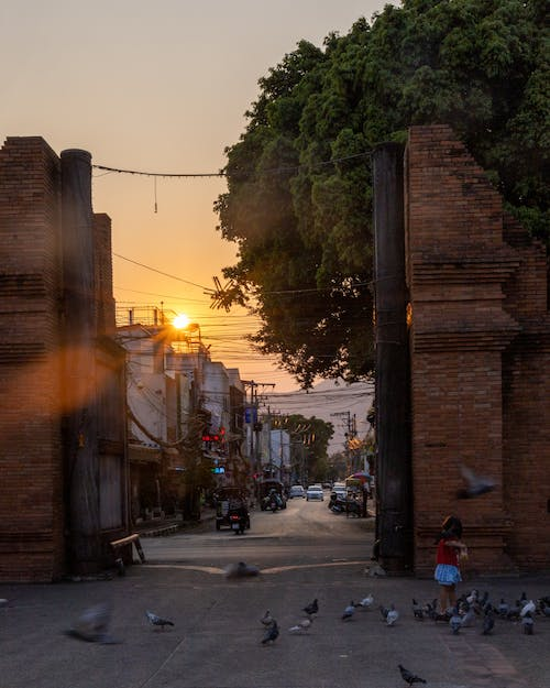 Free stock photo of ancient, architecture, chaing mai, gate