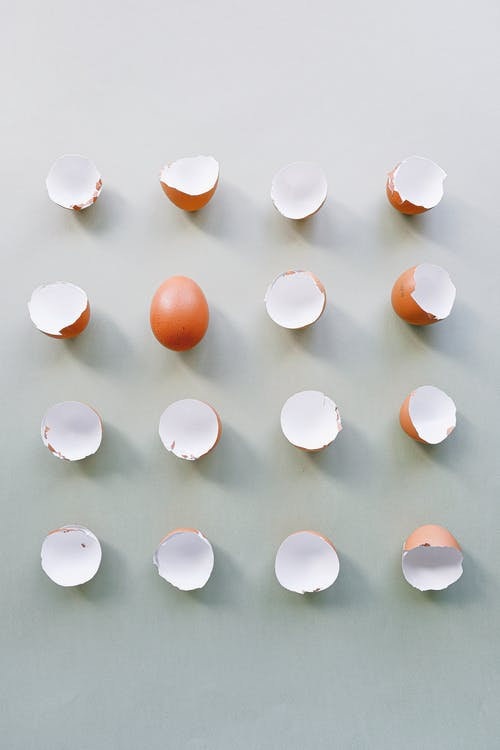 Broken Eggshells on a Plain Background
