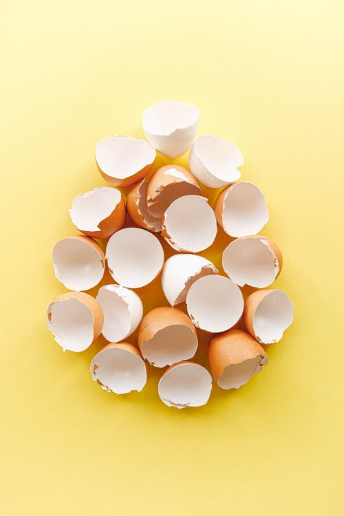 Foto profissional grátis de alimento, cascas de ovo, com defeito, delicado