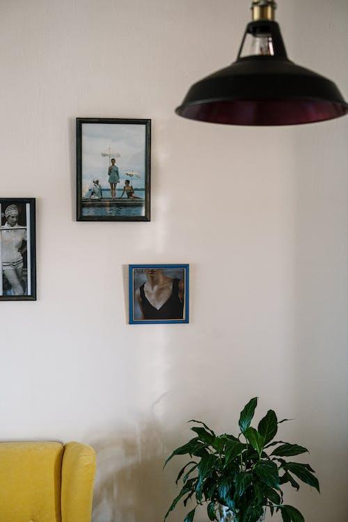 Безкоштовне стокове фото на тему «вдома, вертикальний, відокремлений»