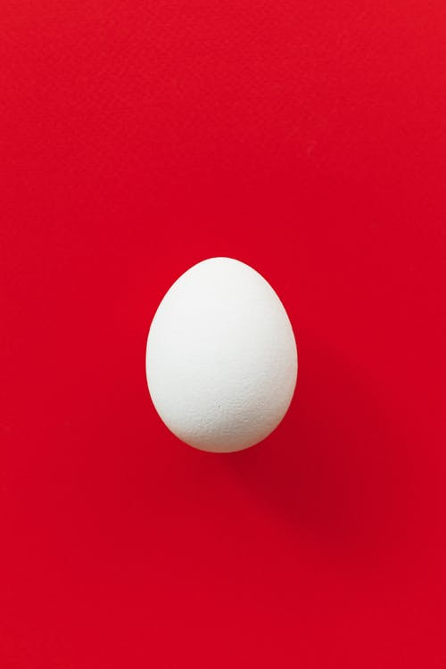 Egg on a Red Background