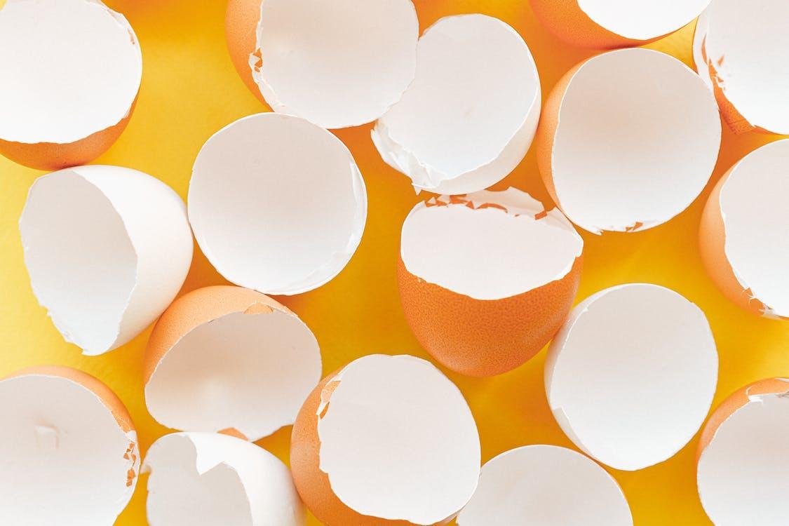 Eggshells on a Yellow Background