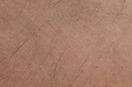 A Person's Skin In Close-up View