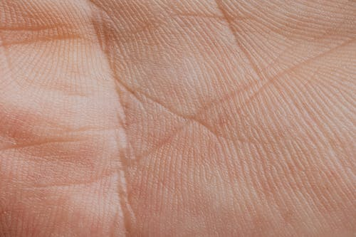 Extreme Close-up View Of A Human Palm