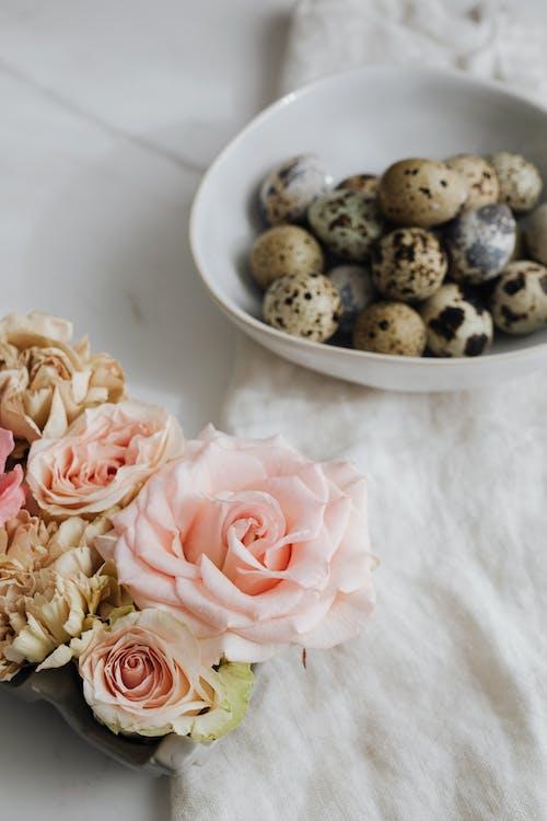 Immagine gratuita di ciotola, fiori, natura morta, rose rosa