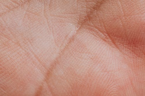 Hand Palm Close Up Photo