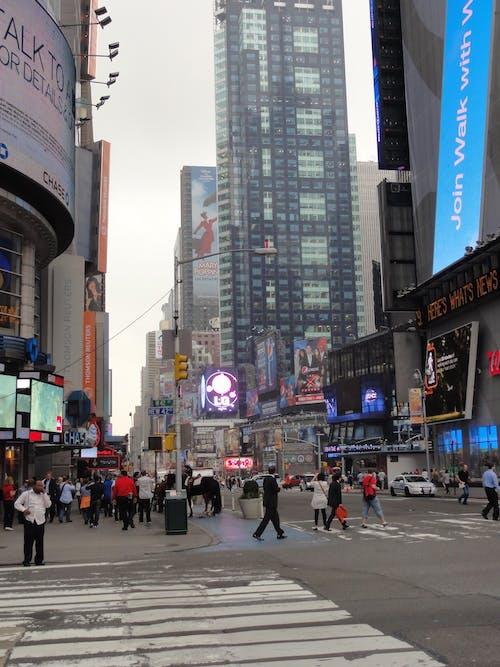 Free stock photo of city, city-challenge, crossing, new york
