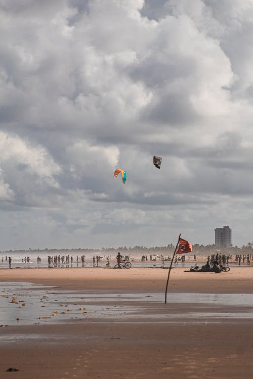 Wet sandy ocean coast with flying kites under cloudy sky