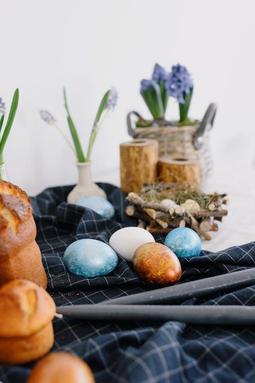 Immagine gratuita di fiori, muffin, natura morta, pasqua