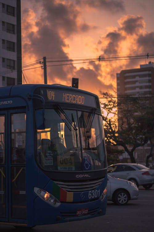 公共, 公車, 城市, 城鎮 的 免費圖庫相片
