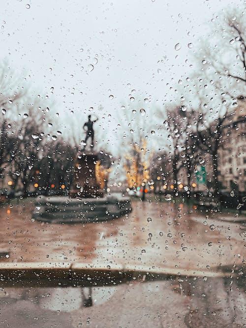 Ingyenes stockfotó boke, bokeh, cseppek, eső témában