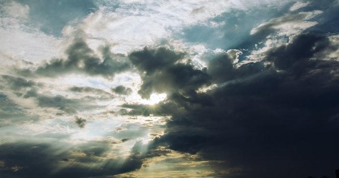 Free stock photo of light, dawn, nature, sky