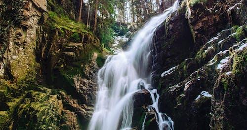 Gratis stockfoto met berg, beweging, Bos, cascade