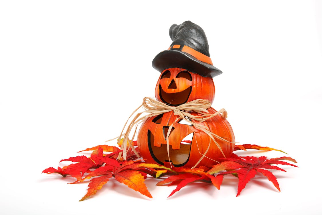Free stock photo of funny, gourd, halloween