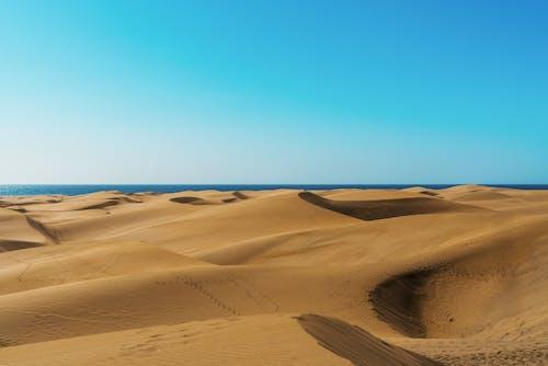 Immagine gratuita di arido, attraente, caldo