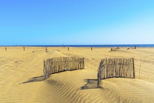 Photos gratuites de admirer, barrière, bord de mer, brillant