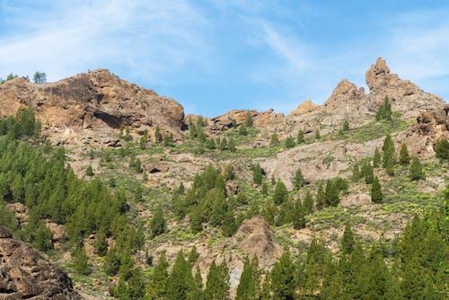 Photo Mountain During Daytime