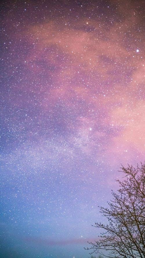 Photos gratuites de all star, célébrités, étoiles, étoiles brillantes