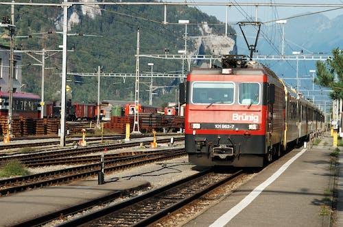 Foto profissional grátis de estrada de ferro