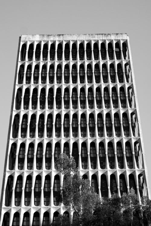 Monochrome Photo Of Building Exterior