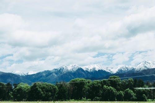 Foto profissional grátis de Alpes, ao ar livre, árvores