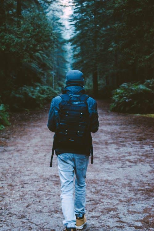 Foto profissional grátis de andando, andar, ao ar livre