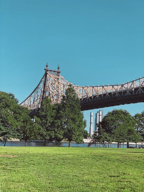 Free stock photo of newyork, newyorkcity, ny