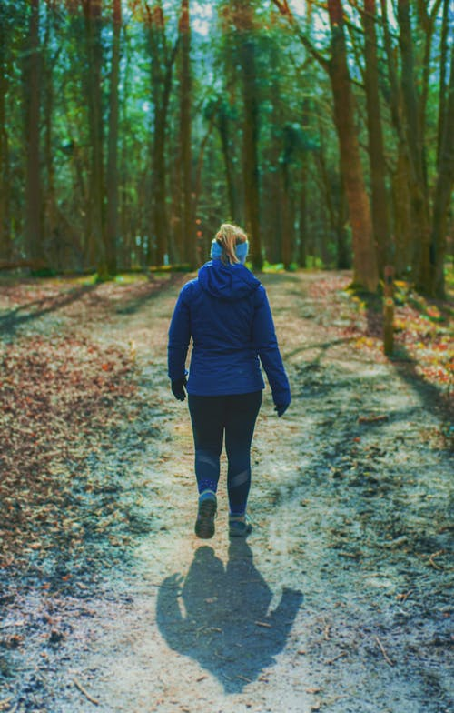 Woman in Blue Hoodie Walking on Pathway To The Woods