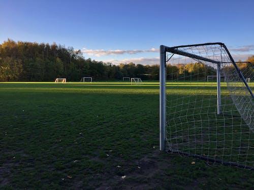 Soccer Goal Net on Green Grass Field