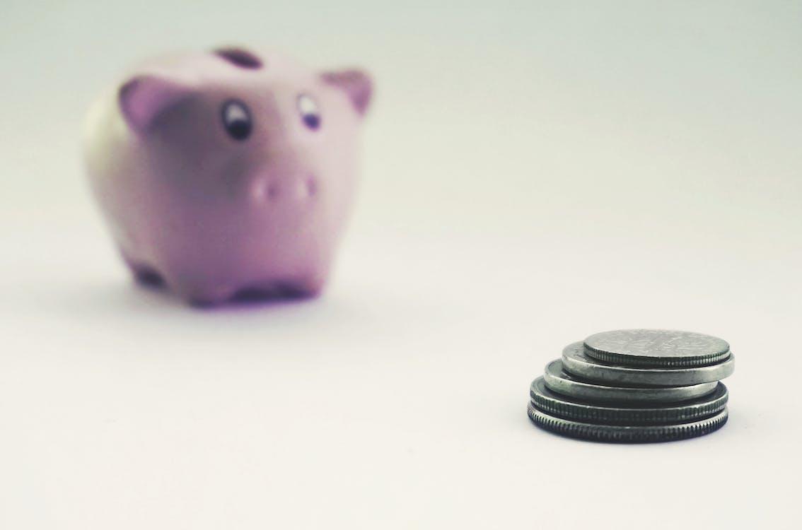 Coins and a Piggy Bank