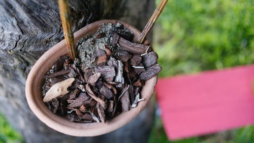 Brown Dried Leaves And Tree Bark On Brown Clay Pot