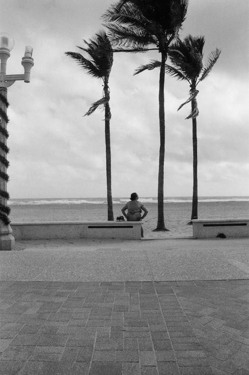 Free stock photo of beach, lady, lady sitting