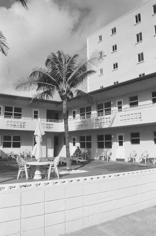 Free stock photo of beach, beach hotel, couple sitting