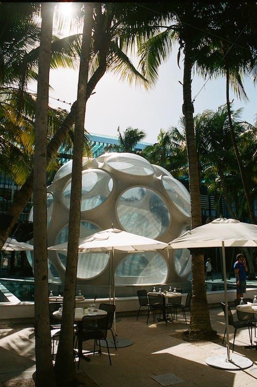 Fotos de stock gratuitas de agua, al aire libre, arquitectura, Arte