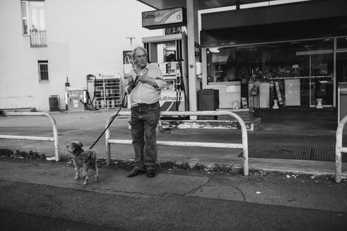 Free stock photo of dog, guy and his dog, guy waiting