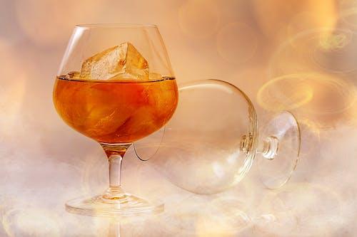 Photos gratuites de alcool, boire, boisson, cocktail
