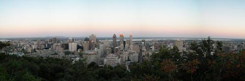 Free stock photo of city, city-challenge, montreal