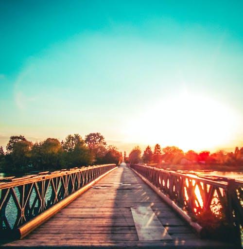 Free stock photo of #bridge, #bridges, #lakeday, #light