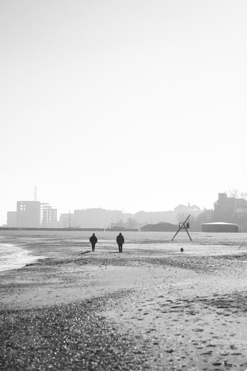 Free stock photo of beach, black and white, black and white backgrounds