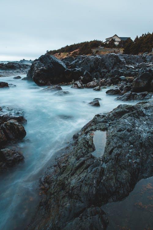 açık hava, akan, coşkun ırmak, coşkun nehir içeren Ücretsiz stok fotoğraf