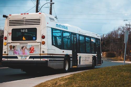 คลังภาพถ่ายฟรี ของ metrobus, กลางวัน, กลางแจ้ง