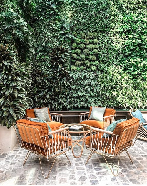 Brown Wooden Armchairs and Green Plants