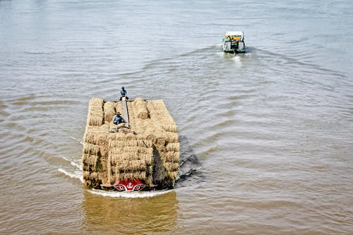 People Standing on Hay Bales Near Body of Water