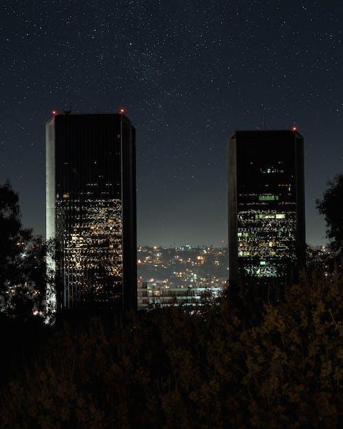 Green trees near buildings located on city street under dark sky at night