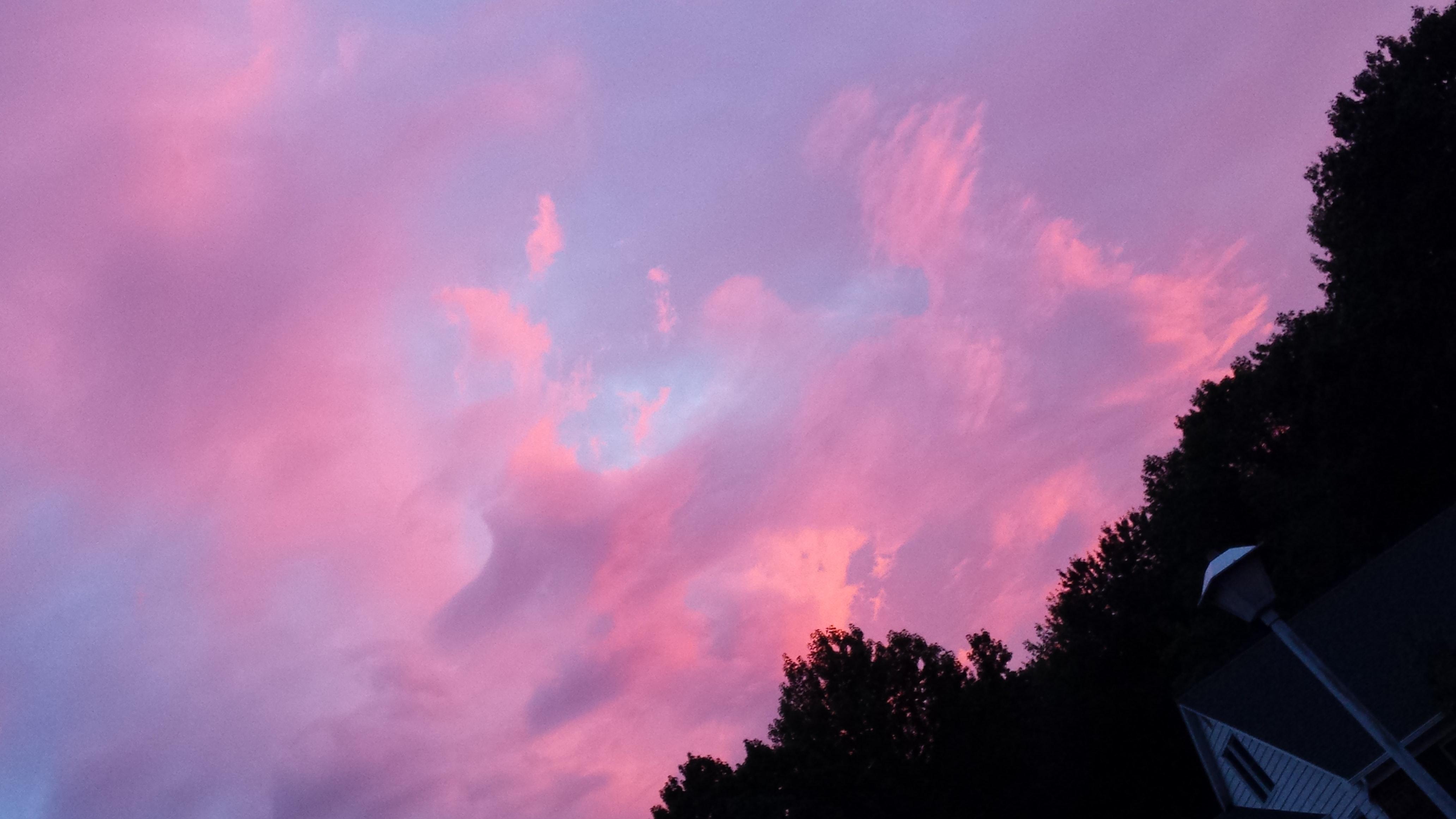 핑크 하늘에 관한 무료 스톡 사진