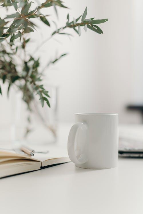 Darmowe zdjęcie z galerii z biały stół, biurko, biuro, czarna kawa